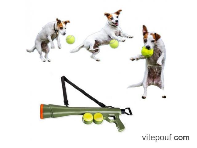 Bazooka lance balle pour dresser votre chien