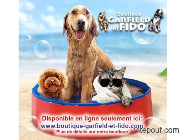 PIscine pour animaux de companie